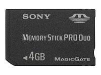 Sony Carte mémoire flash 4 Go MS PRO DUO