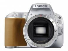 Canon EOS 200D + Objectif EF-S 18-55 mm IS STM