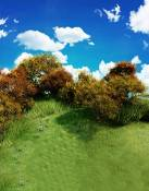 Fond Nature Green Grass Blue Sky Photographie Backdrops photo Props studio 5x7ft